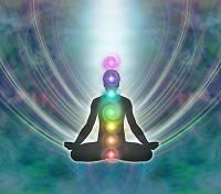 The 7 major chakras.